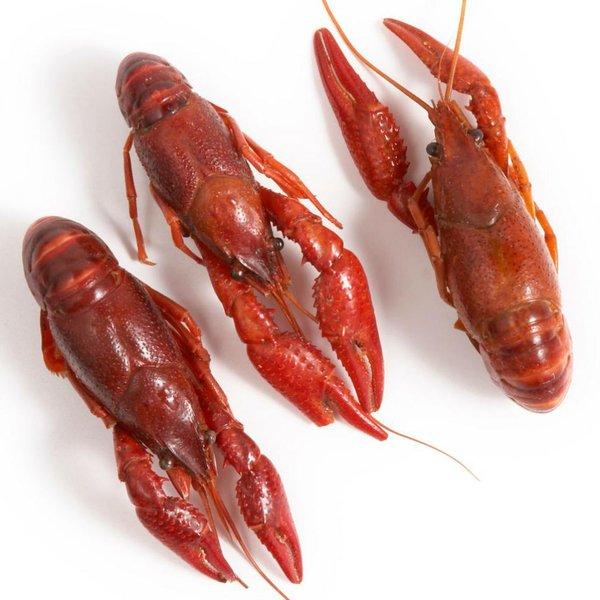 Crawfish Chín/Tôm Hùm Đất